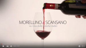 screenshot del documentario sul morellino di scansano